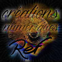 ammonite_01-miniature.jpg